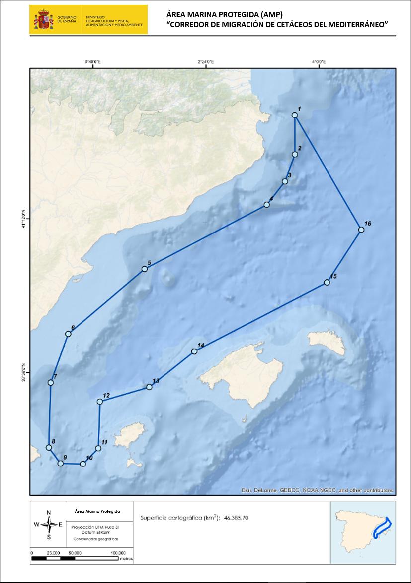 Mapa con la ubicación del Corredor de Cetáceos. Imagen: MTE