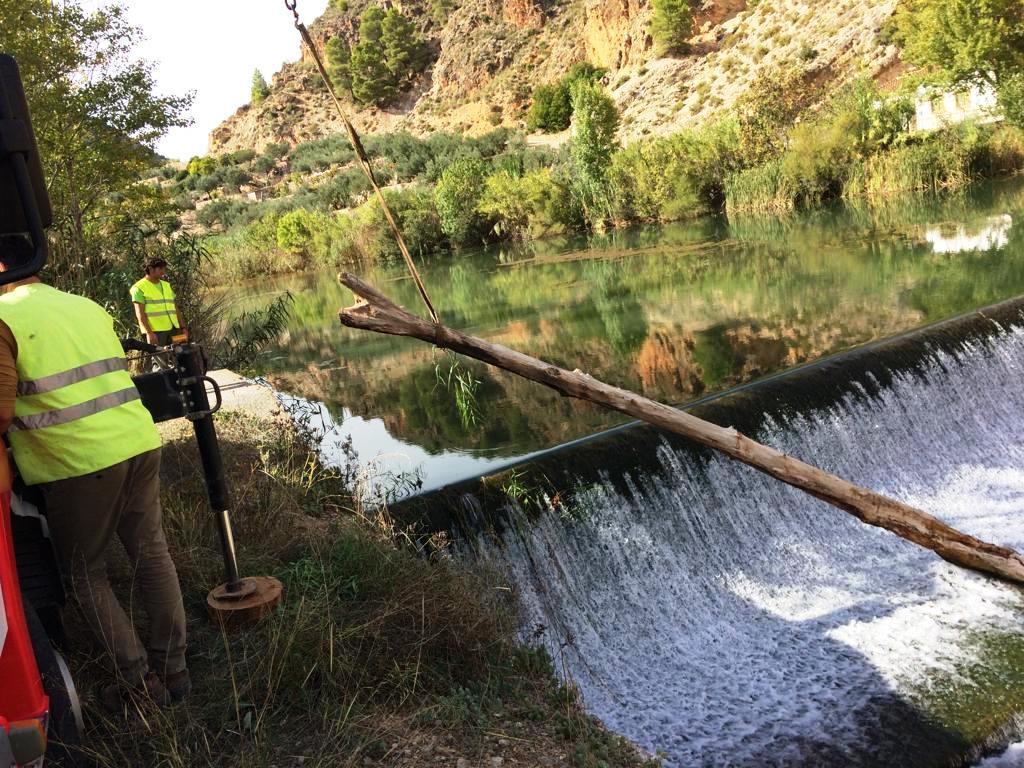 Trabajos de retirada de árboles caídos en el cauce. Imagen: CHS