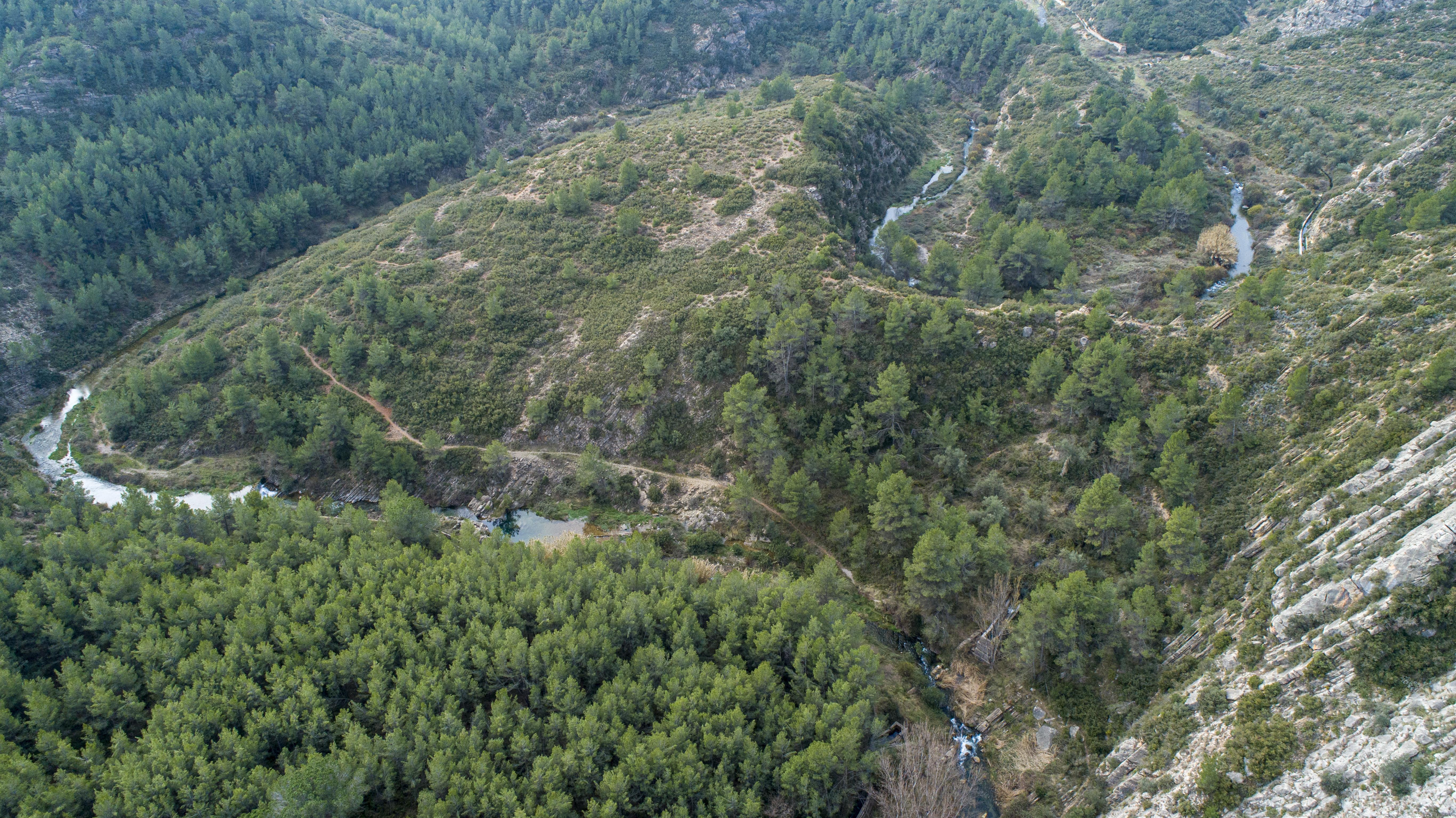 Vista aérea de un meandro del río Palancia. Imagen: Miteco