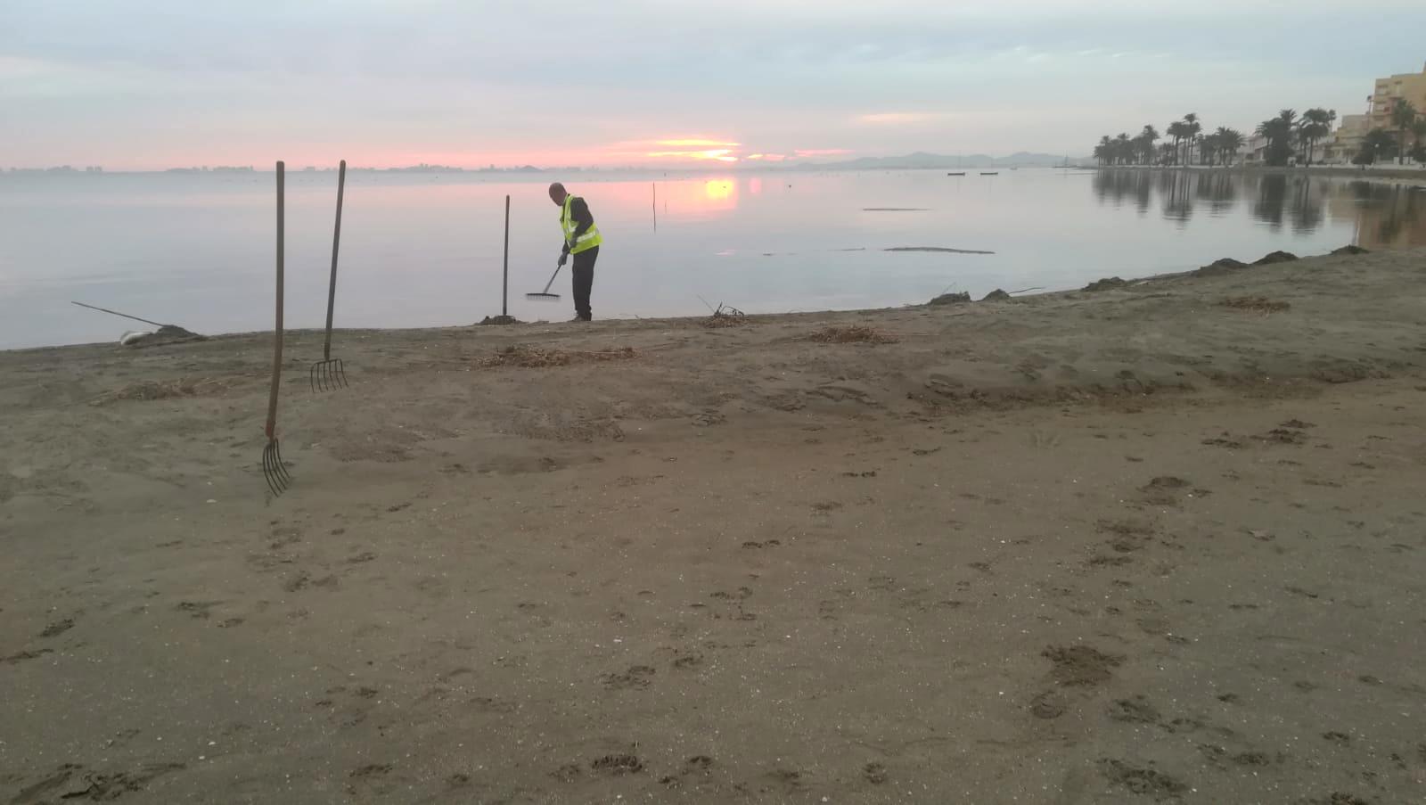 Un momento durante la limpieza de espacios costeros. Imagen: CARM