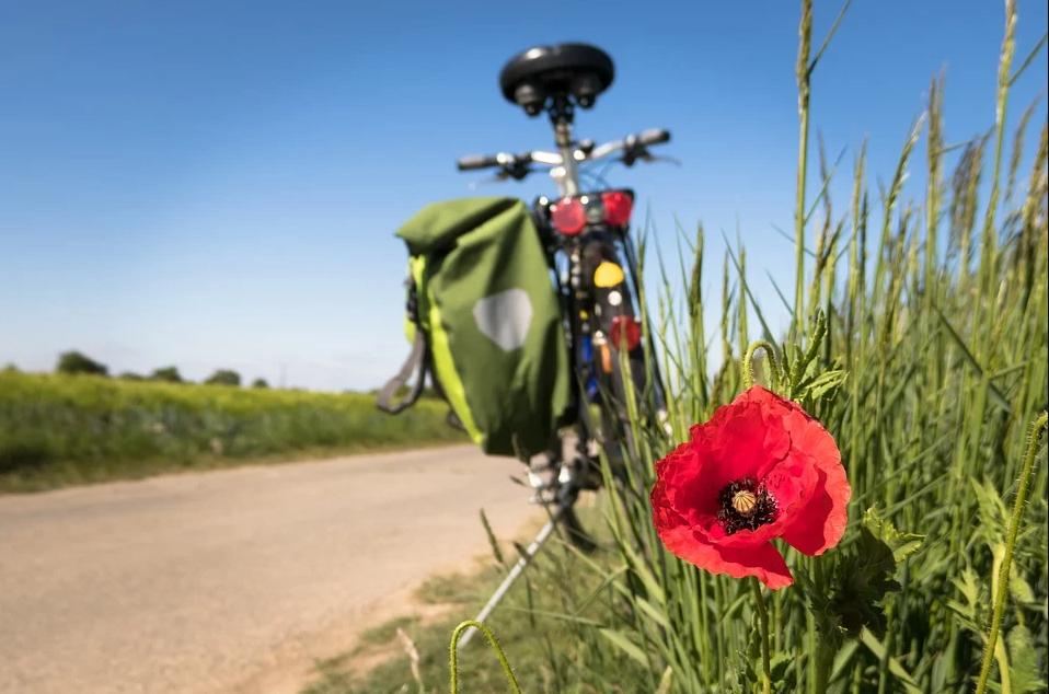 Una bicicleta, parada en un alto en el camino. Imagen: Pixabay