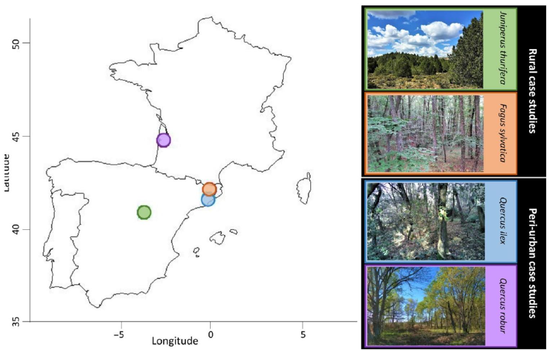 Mapa que incluye la localización de los cuatro estudios de caso, dos en áreas rurales y dos en áreas periurbanas. Imagen: MNCN