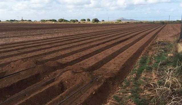 Fotodenuncia que muestra un cultivo con surcos en dirección al Mar Menor, tomada en septiembre de 2018. Imagen: Pacto por el Mar Menor