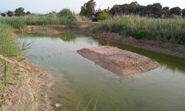 La charca de Bocarrambla, una vez alcanzadas las condiciones óptimas. Imagen: EEA