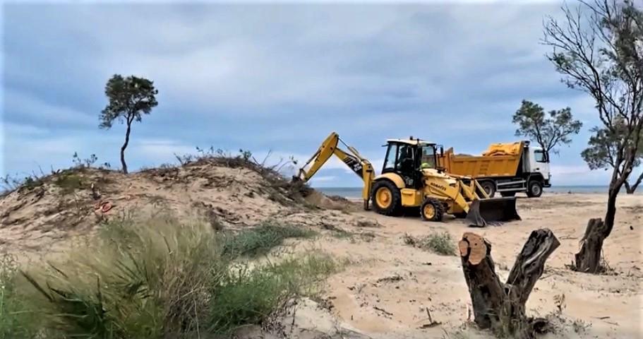 Destrucción del hábitat del chorlitejo patinegro en las dunas de Denia (Alicante). Imagen: Juan Carlos / Adensva