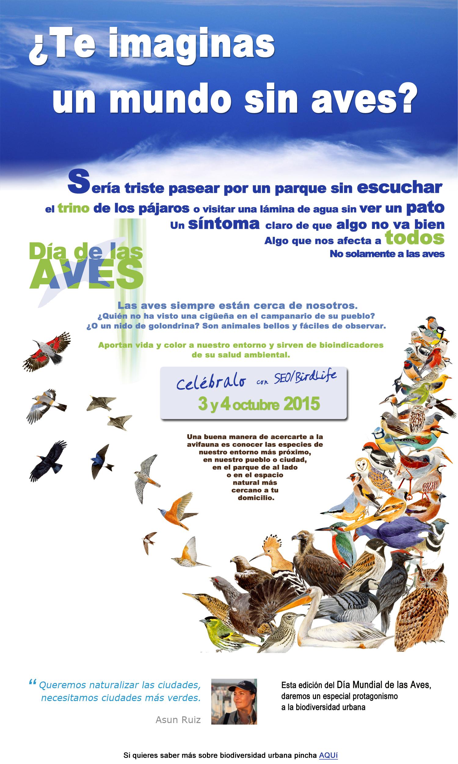 Cartel de SEO/BirdLife para este Día de las Aves 2015.