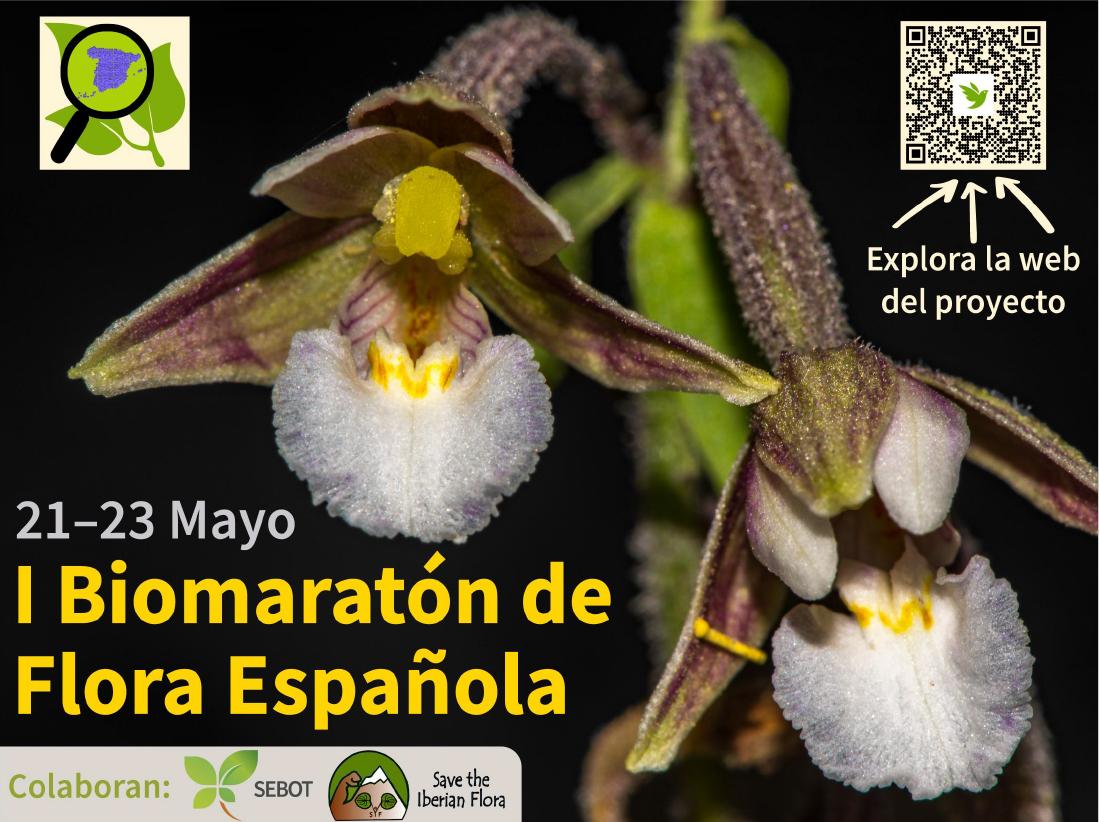 l Biomaratón de Flora Española, con SEBOT