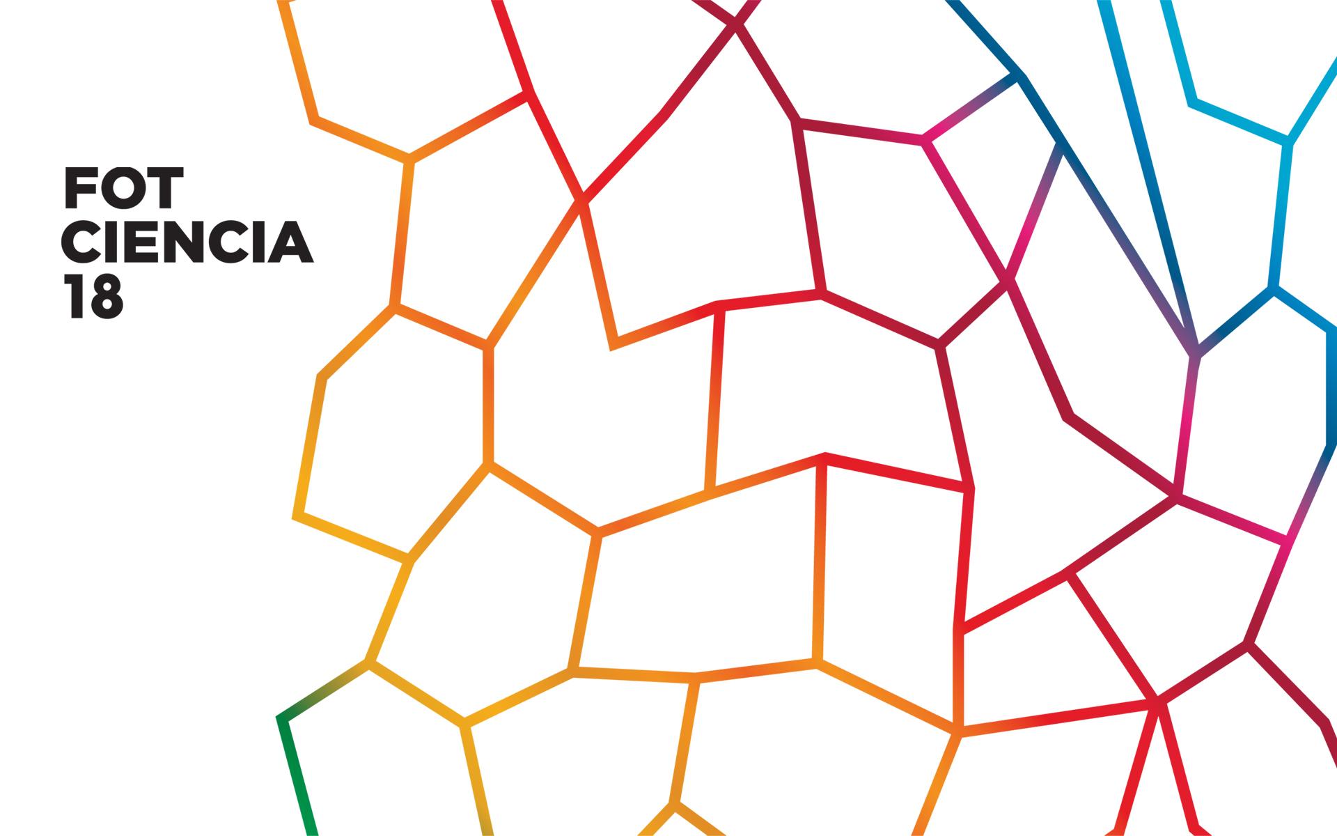 Imagen de FotCiencia18, del CSIC y Feyct