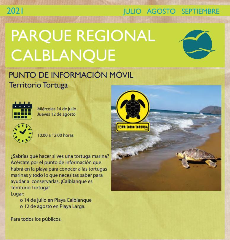 Información sobre tortugas marinas en Calblanque 2, con al CARM