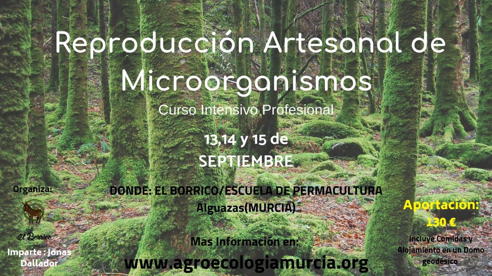 Reproducción artesanal de microorganismos, con El Borrico