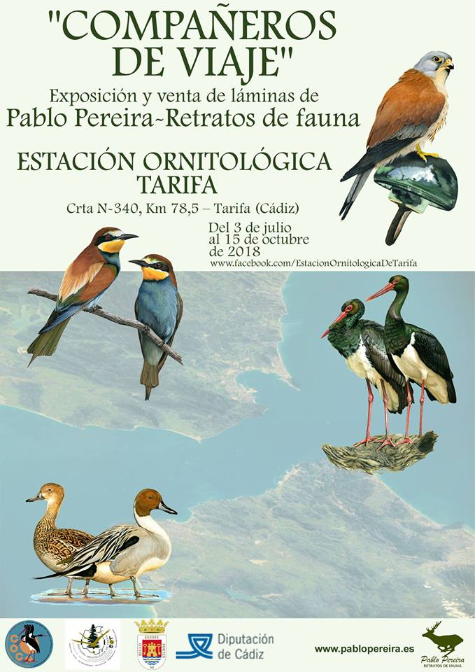 Cartel de la exposición 'Compañeros de viaje' de Retratos de fauna