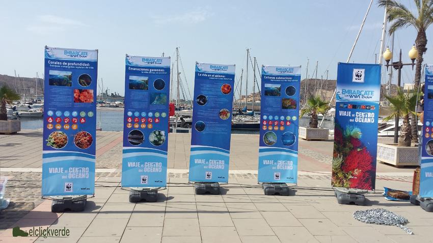 Exposición de WWF sobre los fondos marinos de profundidad.