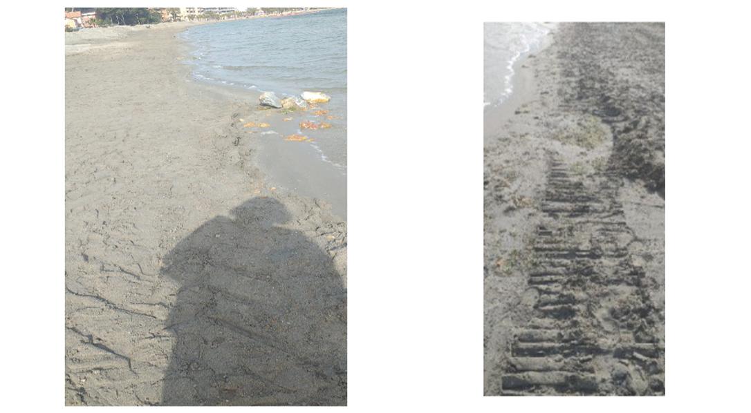 Rodadas en la arena. Imagen: Por un Mar Vivo