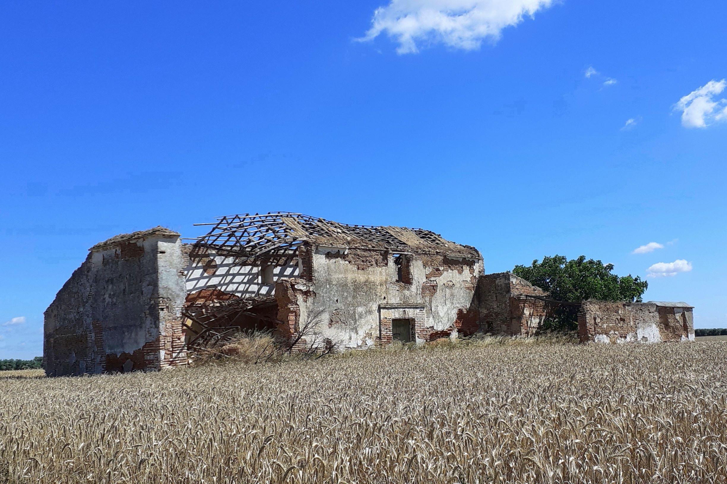 Viejas construcciones -lugares de nidificación- en desaparición en los campos. Imagen: Manuel Moral / Pcaeh