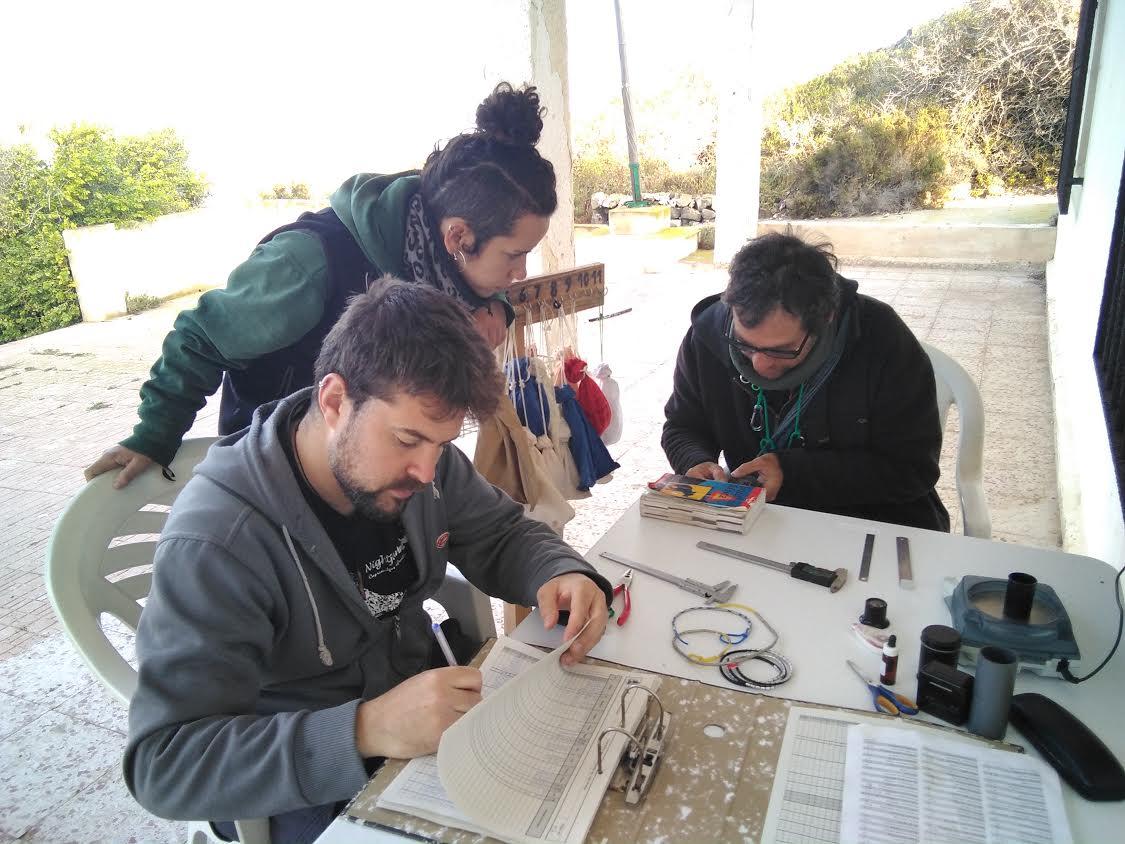 Los voluntarios, trabajando en Isla Grosa. Imagen: ANSE