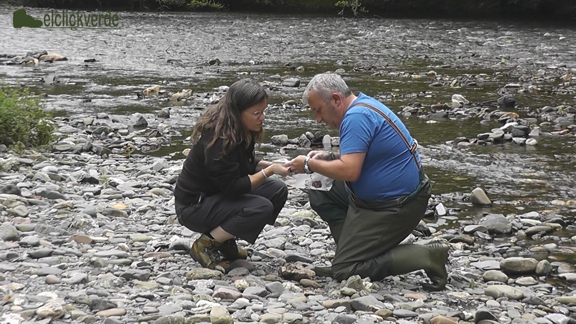 Juan Carlos Cardesín enseña a Mónica Rubio las muestras de invertebrados recién recogidas.