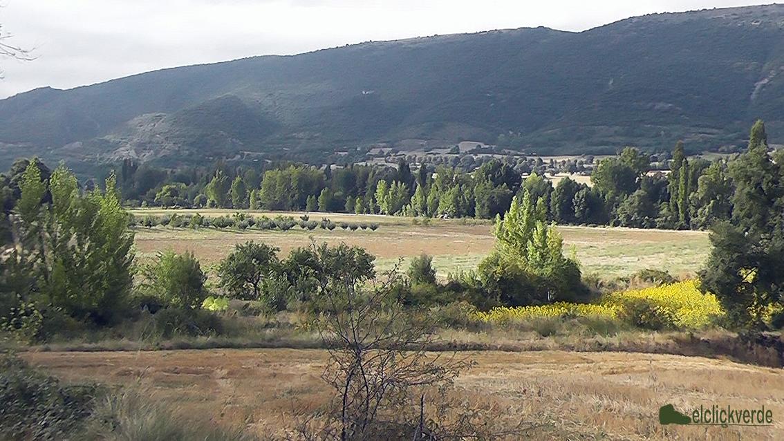Foto: paisajes de la Merindad de Valdivieso. Al fondo, se empieza a elevar la Meseta.