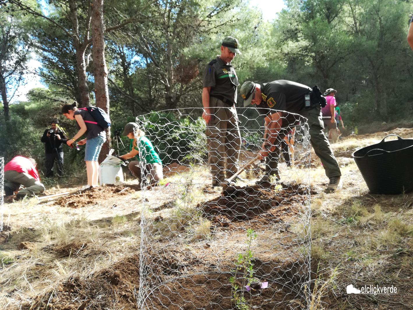 Los agentes forestales vigilaron la zona y echaron una mano