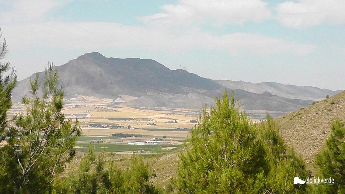 Vistas del entorno de Jumilla. ecv.