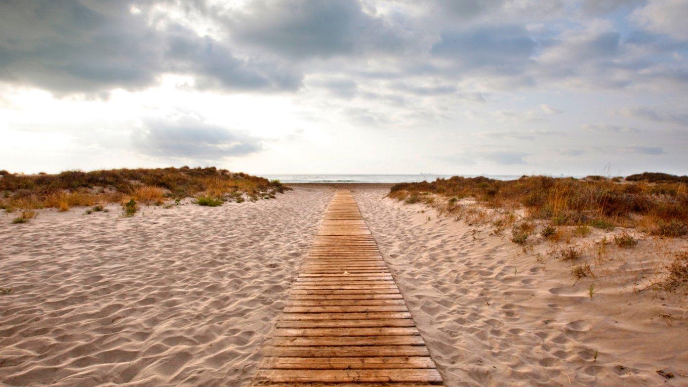 Entre los espacios reconocidos se encuentra la Playa del Serradal, en Castelló de la Plana, con dunas móviles y fijas, y pastizales salinos. Imagen: GV
