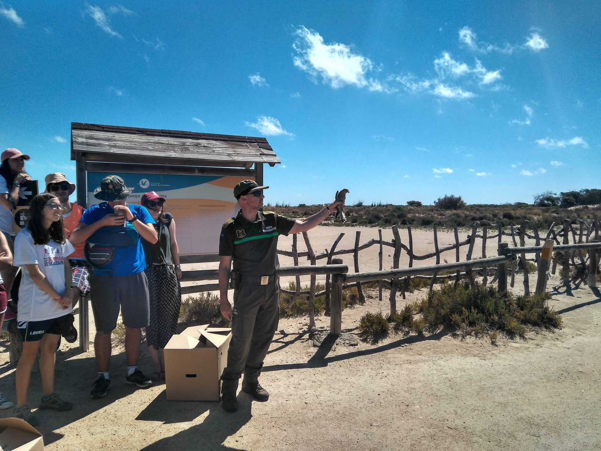 Liberación de una de las aves tratadas en el Centro de Recuperación de Fauna Silvestre de El Valle. Imagen: CARM