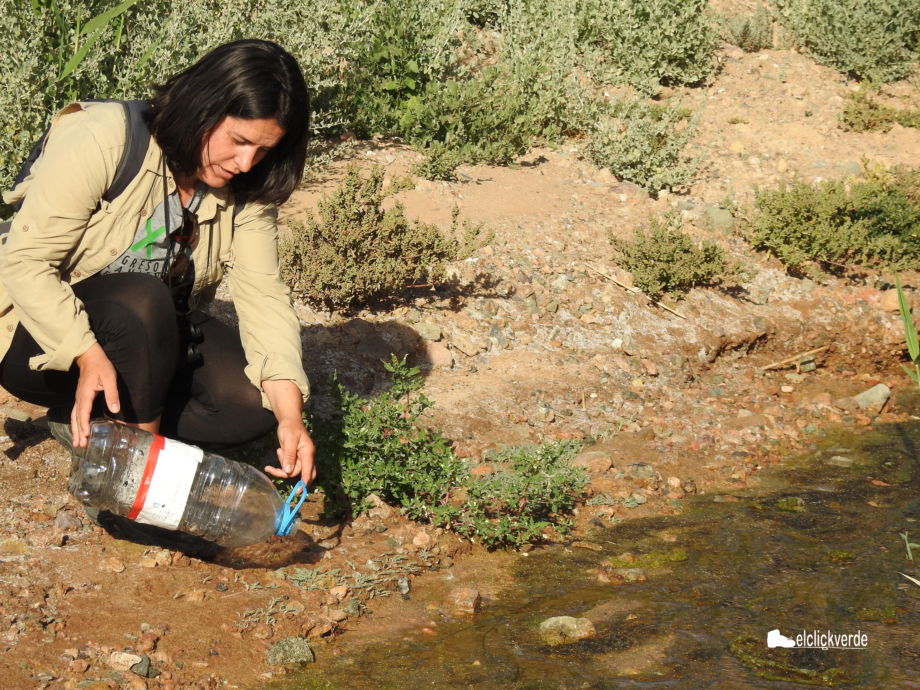 Susana Noguera liberó a los anfibios guardados en una de las garrafas