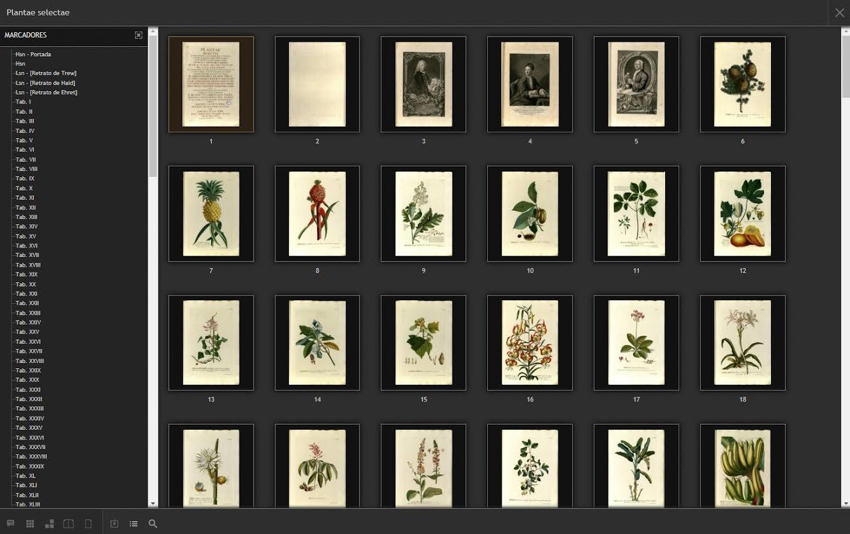 Una página con una vistosa recopilación de láminas de distintas especies. Imagen: RJB-CSIC