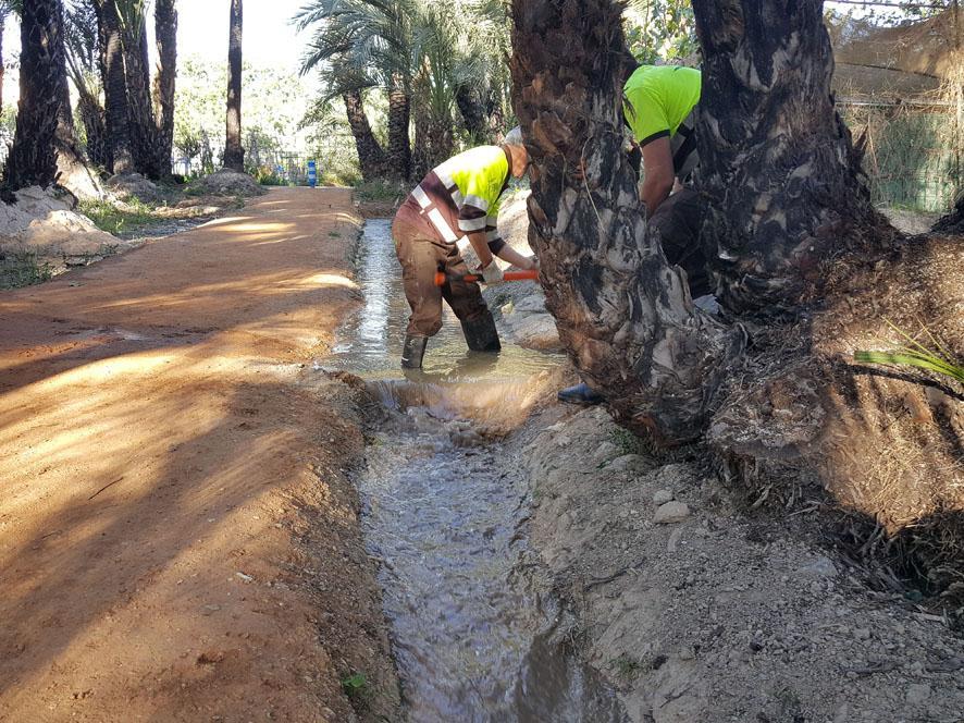 El agua, discurriendo por las acequias del palmeral de Santiago y Zaraciche. Imagen: Ayto. de Murcia