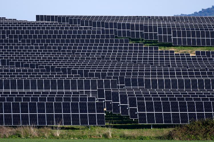 Más de 300 proyectos fotovoltaicos están en proceso de tramitación en Andalucía. Imagen: David Serrano (EBD-CSIC) / Pcaeh.
