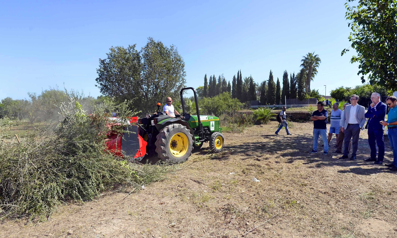 Un centenar de agricultores de distintas pedanías ya se han interesado por este tratamiento. Imagen: Ayto. de Murcia