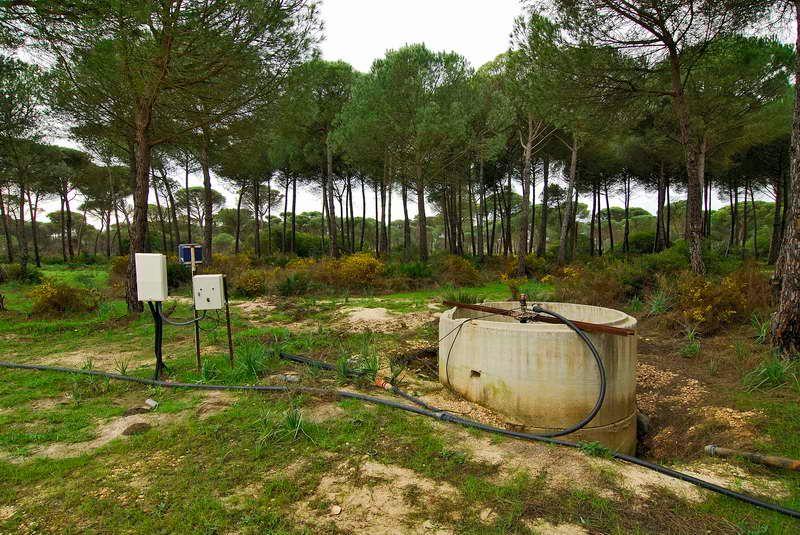 Pozo ilegal detectado en Doñana. Imagen: Jorge Sierra / WWF