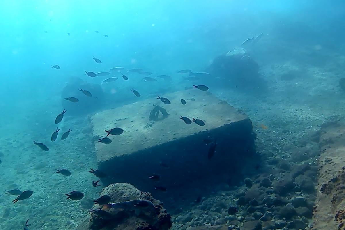 Fondos de El Espalmador en los que se ubicará la cámara submarina y la boya que se va a desarrollar. Imagen: UPCT