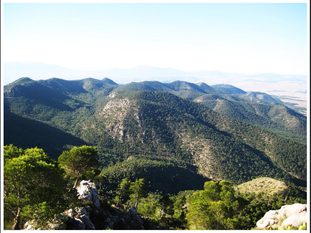 Sierra de Ricote. Imagen: CARM (Catálogo de montes de utilidad pública)