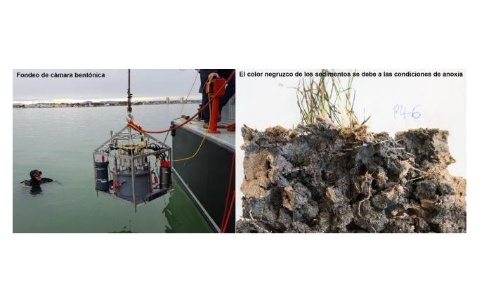 La UPCT y el Instituto Español de Oceanografía analizan los fondos del mar Menor. Imagen: UPCT