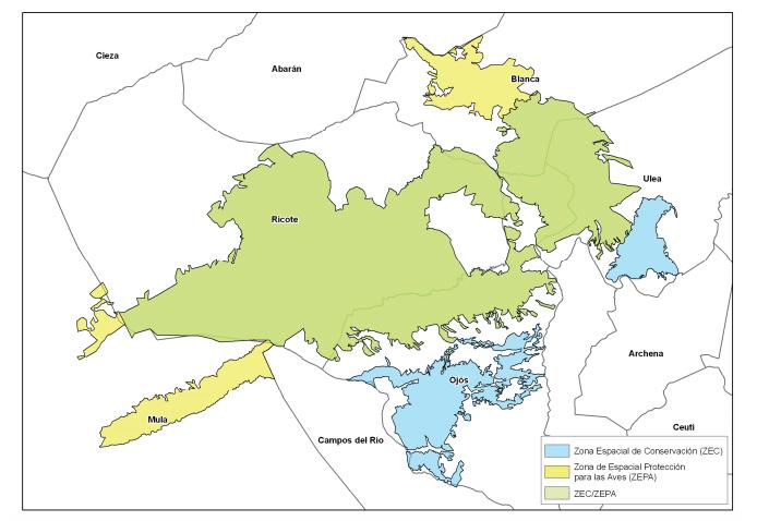 Ámbito territorial del Plan de Gestión Integral de los Espacios Protegidos Red Natura 2000 de la Sierra de Ricote y La Navela. Imagen: CARM