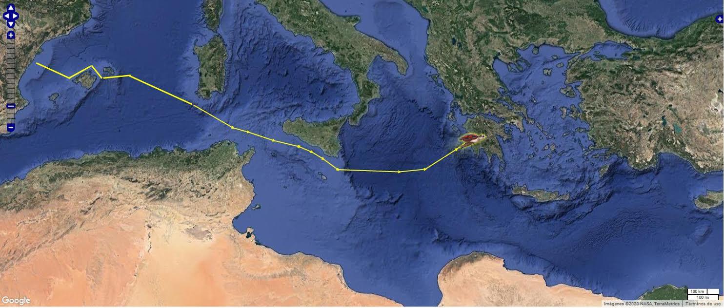 El largo recorrido de Colomera supera ya los 3.00 kilómetros. Imagen: Fundación Oceanogràfic