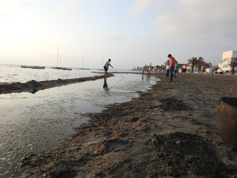 Trabajos de rescate en la playa de Punta Brava. Imagen: EEA