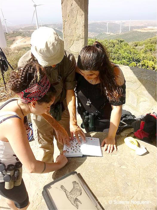 Los voluntarios que hoy estaban en el observatorio de El Cabrito. Imagen: Susana Noguera