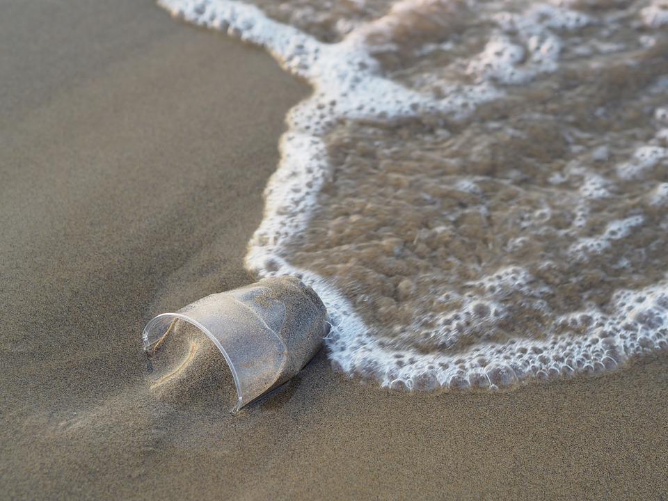 Un vaso de plástico abandonado en la orilla. Imagen: Pixabay